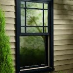 Integrity Double Hung images